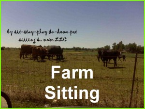 http://www.sit-stay-play.com/farm-sitting-service-farm-animal-care