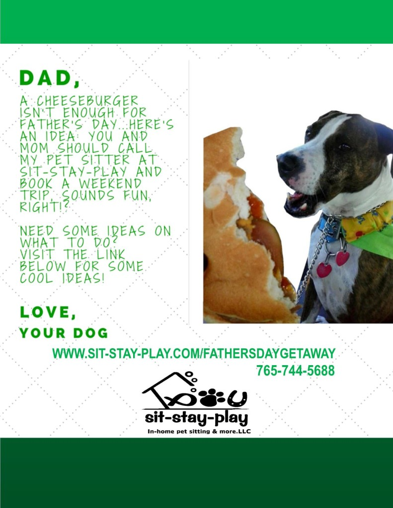 http://www.sit-stay-play.com/5-fun-things-to-do-on-fathers-day